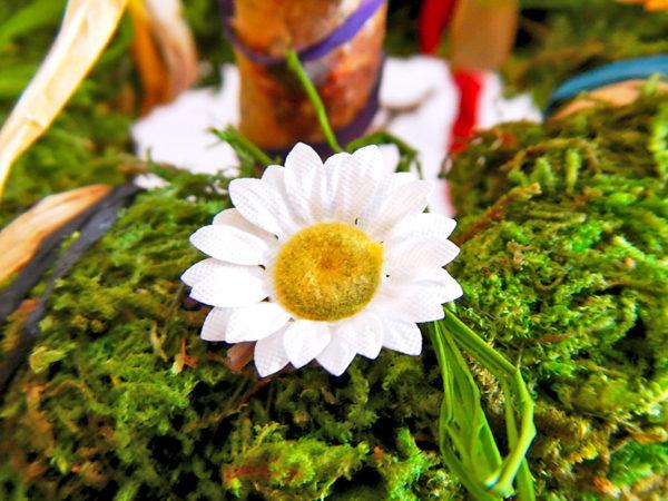 Beltane Baum - weiße Blume (Abb. ähnlich)